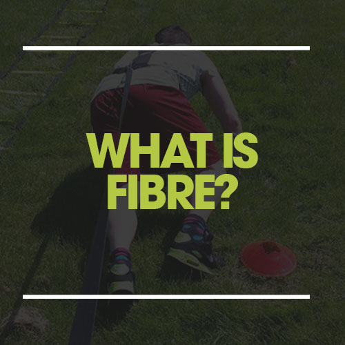 what is fibre?